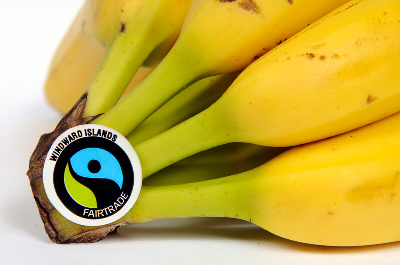 fairtrade versus fairchain