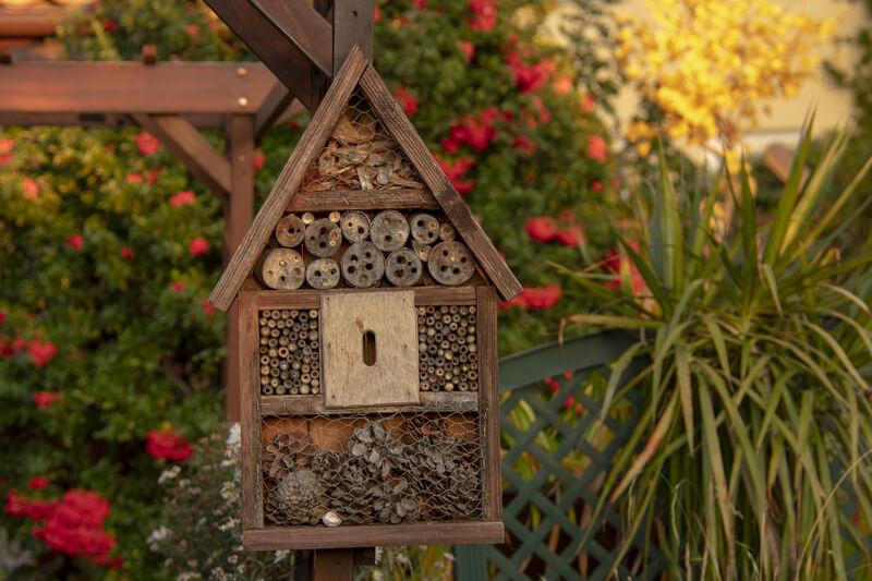 insectenhotel bouwen